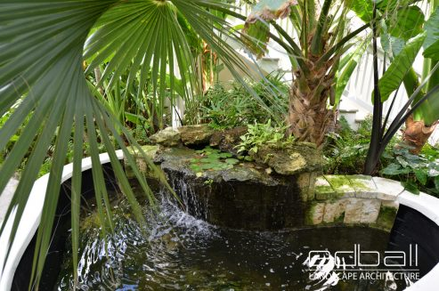 landscape-architect-outdoor-gardens-plantings-trees--northern-virginia-005
