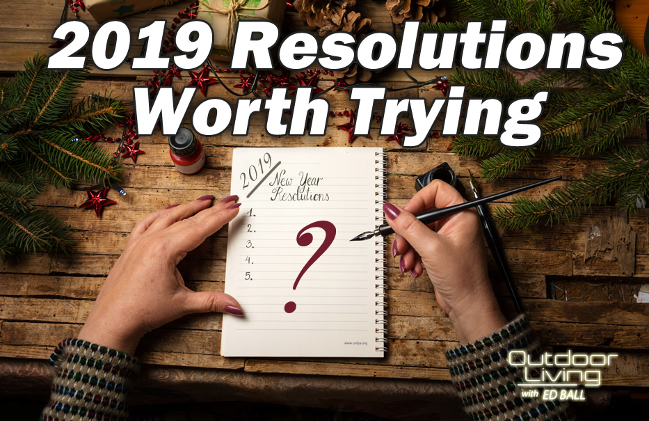 New Years Resolutions by Ed Ball